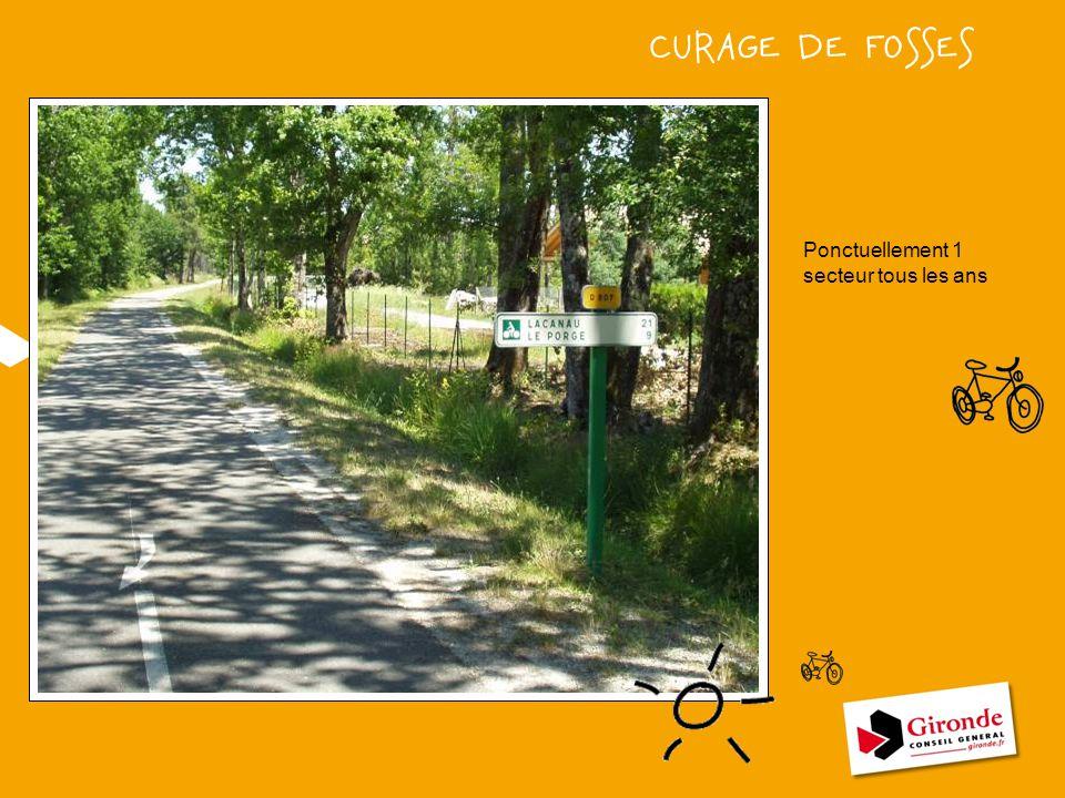 CURAGE DE FOSSES VOIR AVEC PIERRE POUR PHOTO