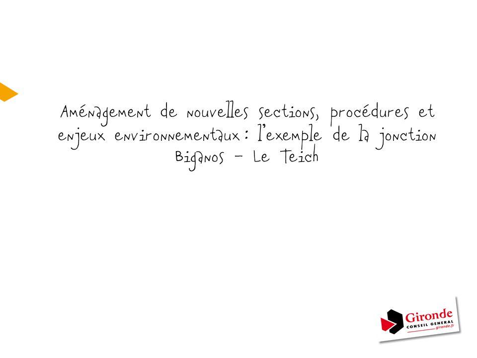 Aménagement de nouvelles sections, procédures et enjeux environnementaux : l'exemple de la jonction Biganos – Le Teich