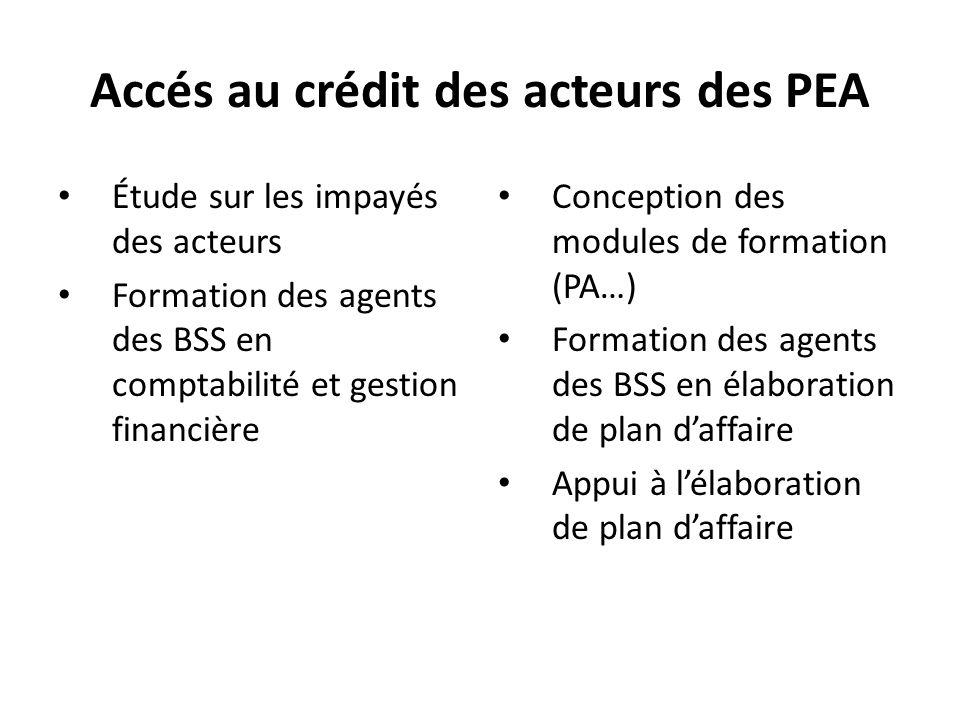 Accés au crédit des acteurs des PEA