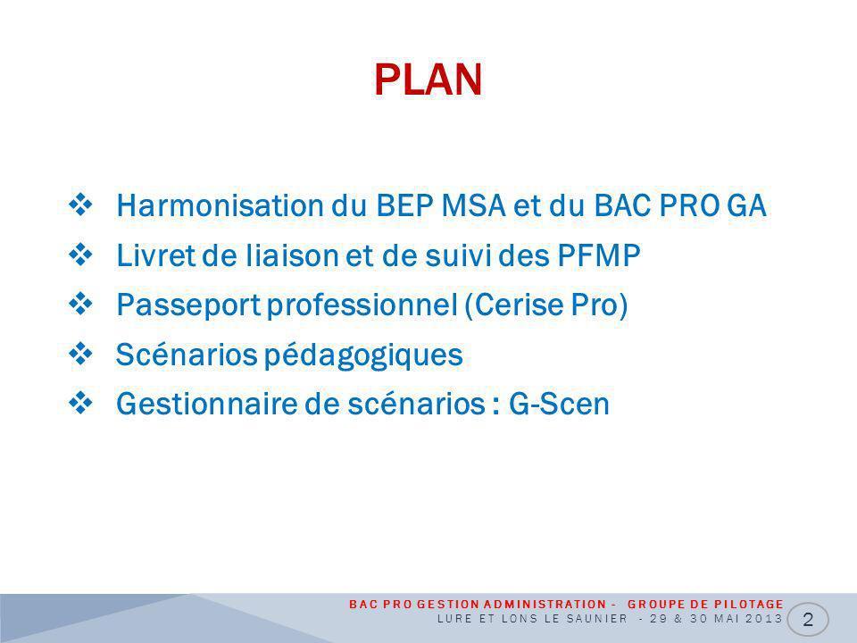 PLAN Harmonisation du BEP MSA et du BAC PRO GA