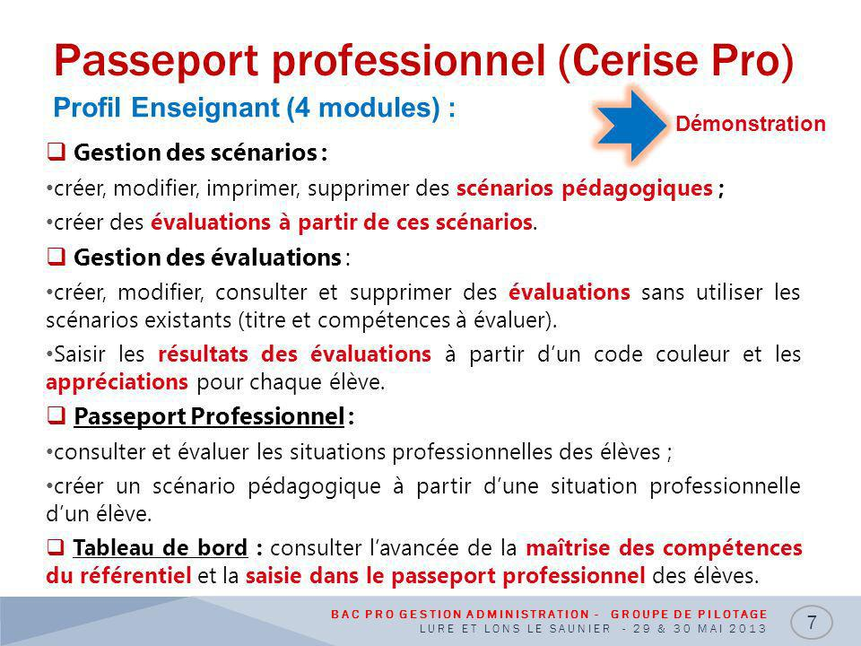 Passeport professionnel (Cerise Pro)