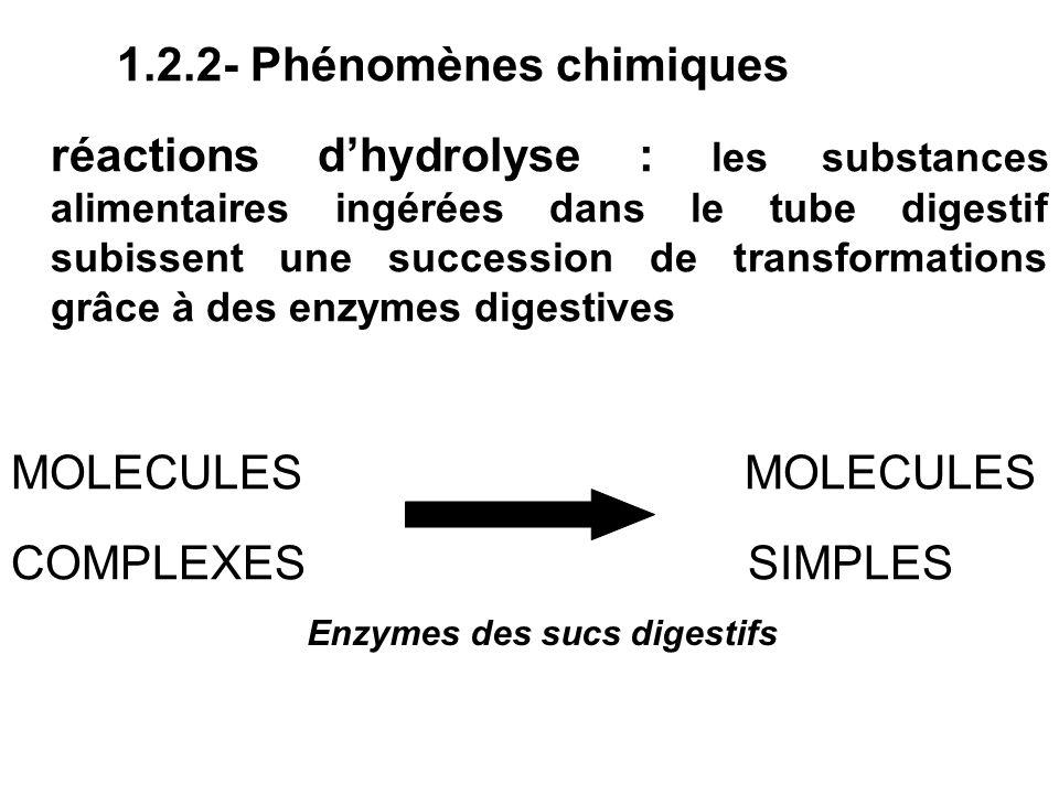 1.2.2- Phénomènes chimiques