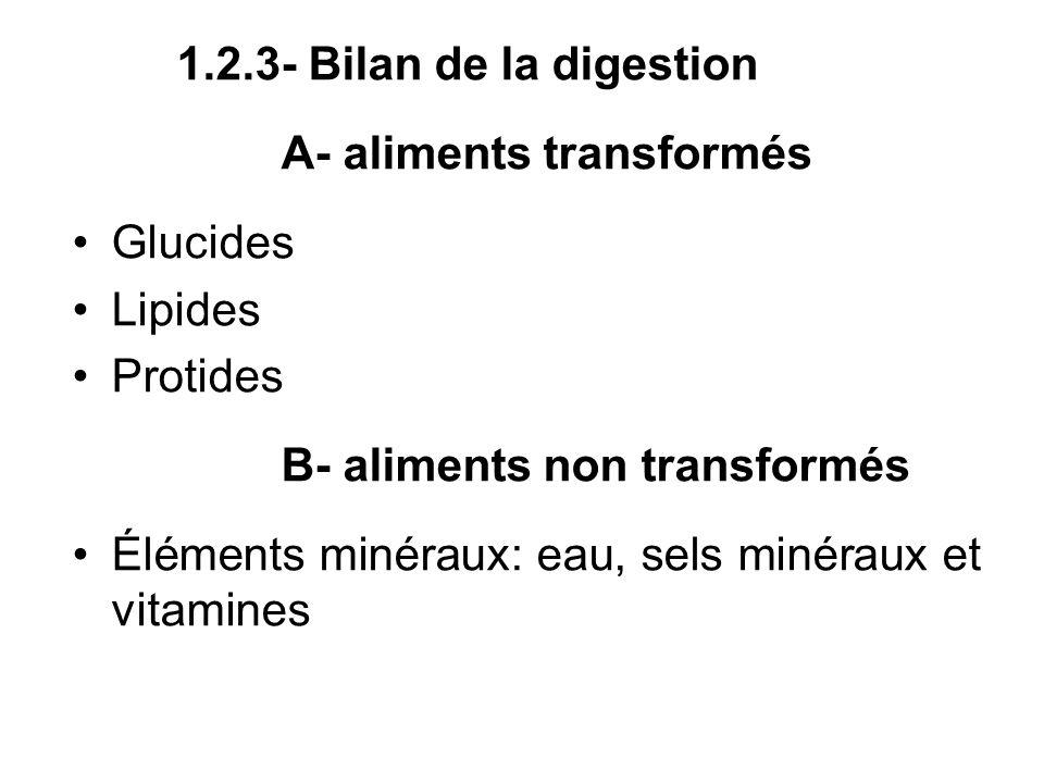 1.2.3- Bilan de la digestionA- aliments transformés. Glucides. Lipides. Protides. B- aliments non transformés.