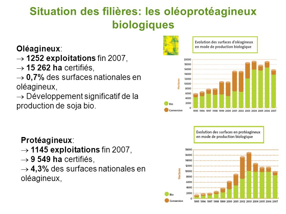 Situation des filières: les oléoprotéagineux biologiques