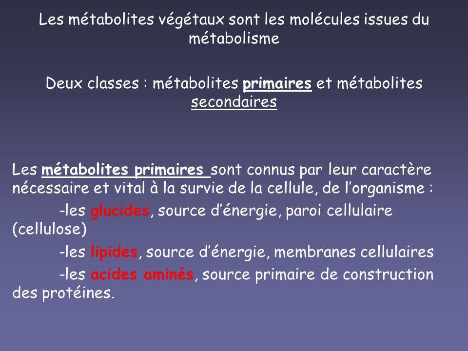 Les métabolites végétaux sont les molécules issues du métabolisme