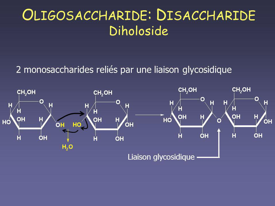 OLIGOSACCHARIDE: DISACCHARIDE Diholoside