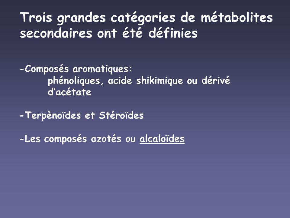 Trois grandes catégories de métabolites secondaires ont été définies