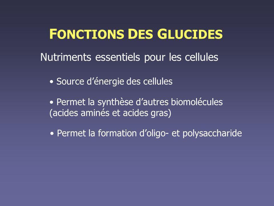 FONCTIONS DES GLUCIDES