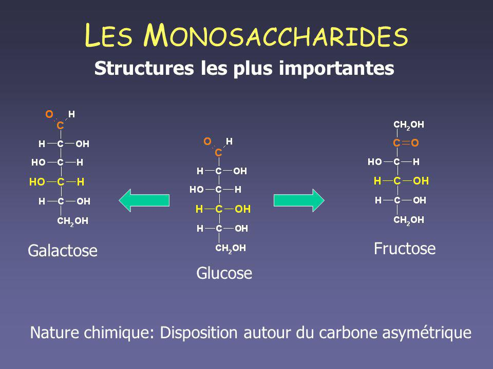 Structures les plus importantes
