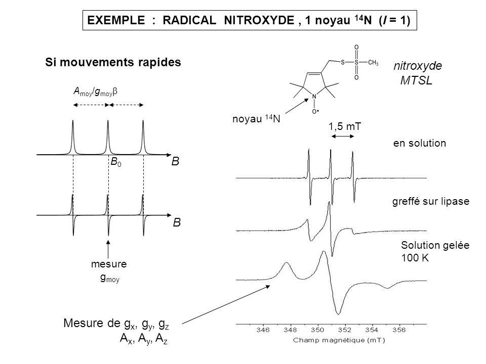 EXEMPLE : RADICAL NITROXYDE , 1 noyau 14N (I = 1)