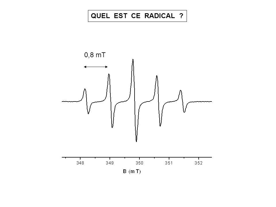 QUEL EST CE RADICAL 0,8 mT