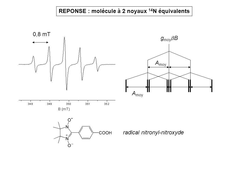REPONSE : molécule à 2 noyaux 14N équivalents