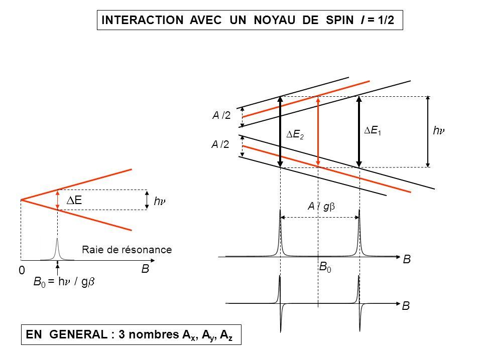 INTERACTION AVEC UN NOYAU DE SPIN I = 1/2