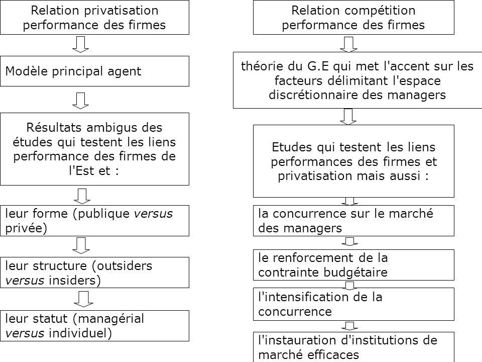Relation privatisation performance des firmes