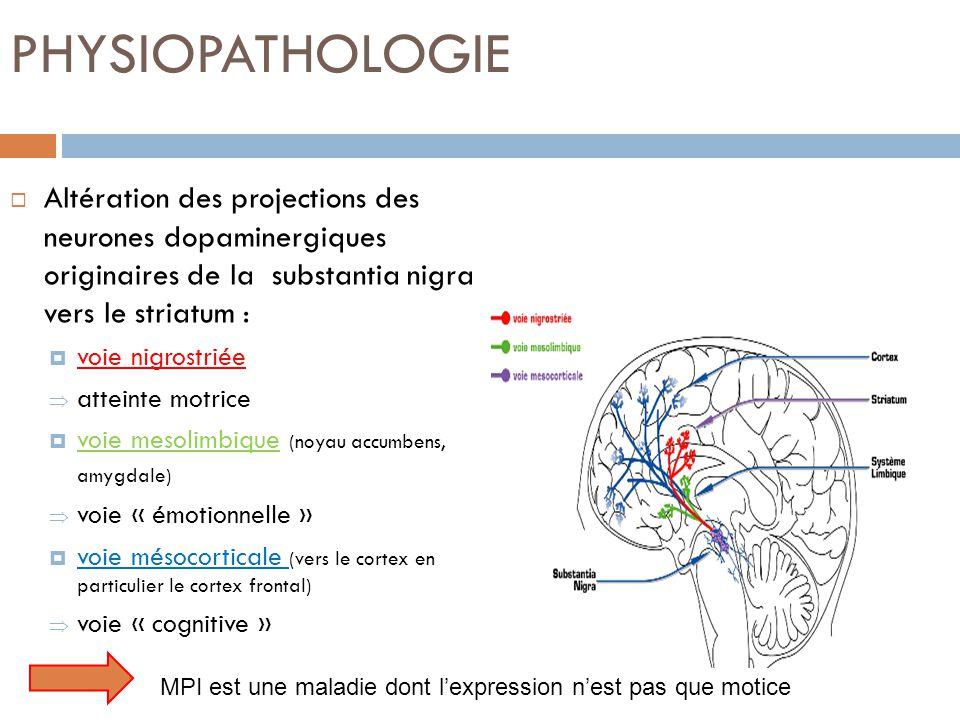 PHYSIOPATHOLOGIE Altération des projections des neurones dopaminergiques originaires de la substantia nigra vers le striatum :