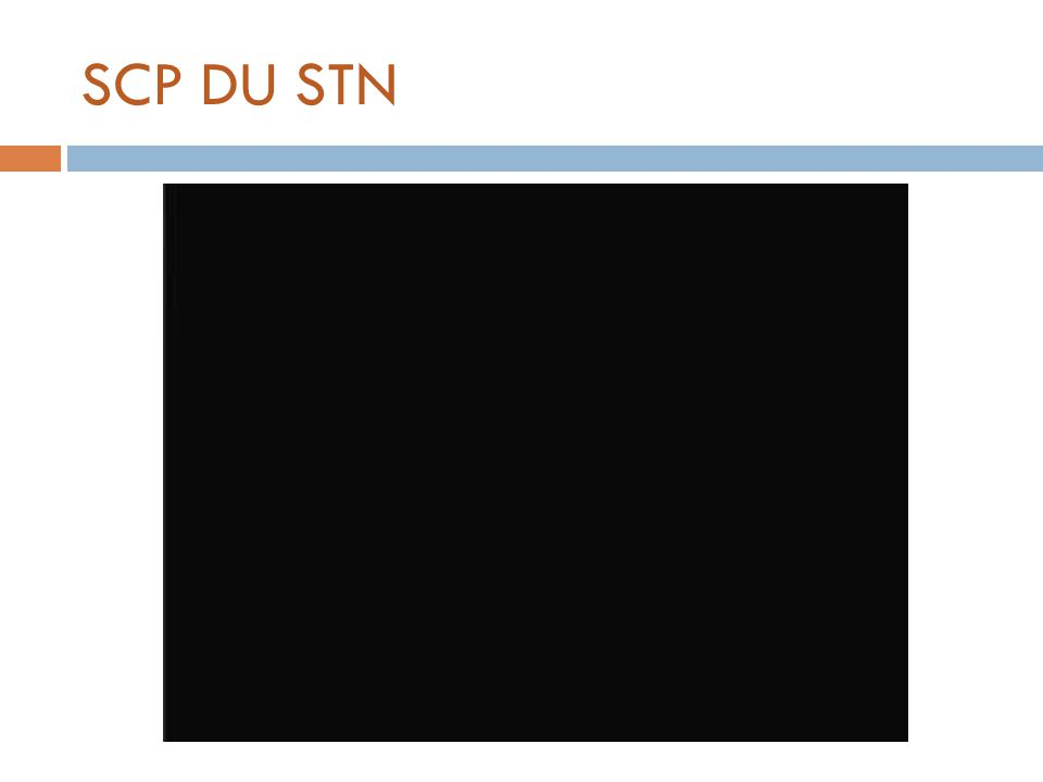 SCP DU STN