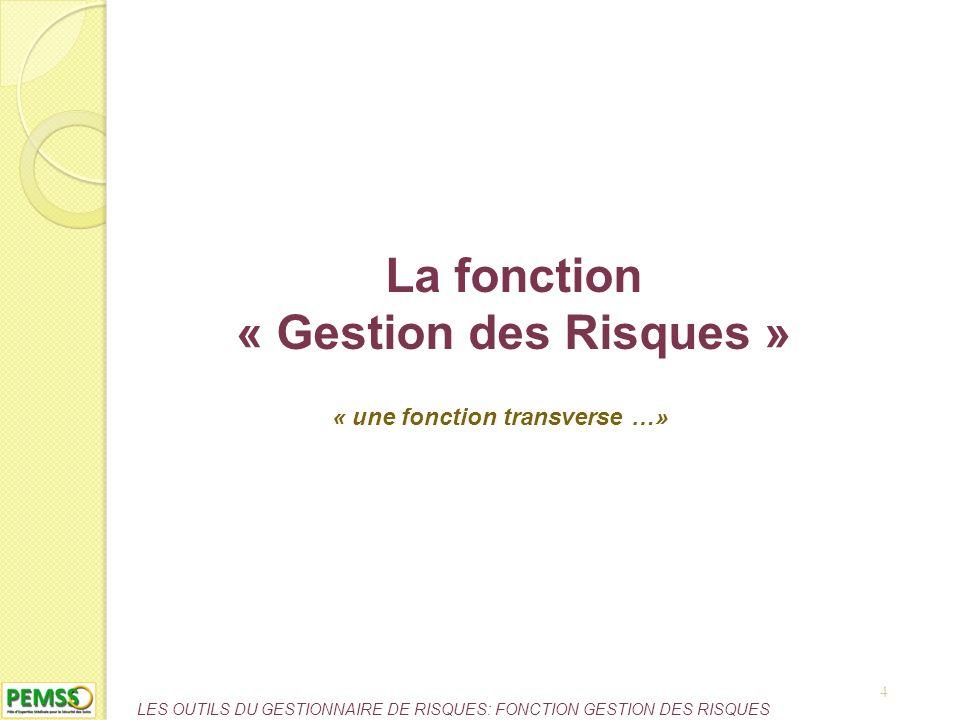 LES OUTILS DU GESTIONNAIRE DE RISQUES: FONCTION GESTION DES RISQUES