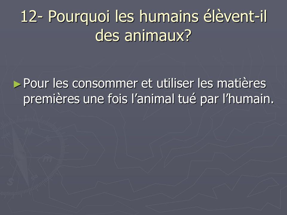 12- Pourquoi les humains élèvent-il des animaux