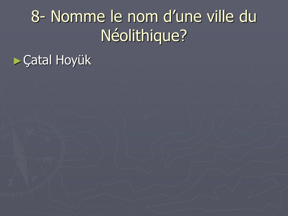 8- Nomme le nom d'une ville du Néolithique