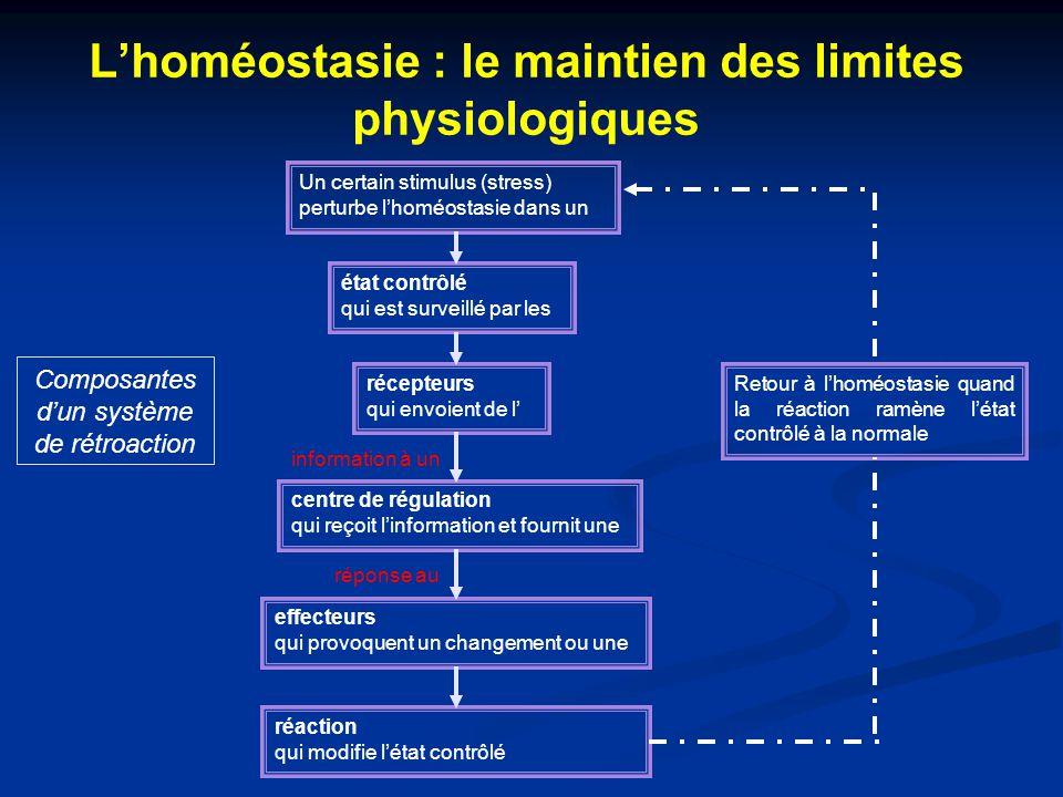 L'homéostasie : le maintien des limites physiologiques