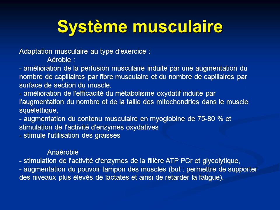 Système musculaire Adaptation musculaire au type d'exercice :