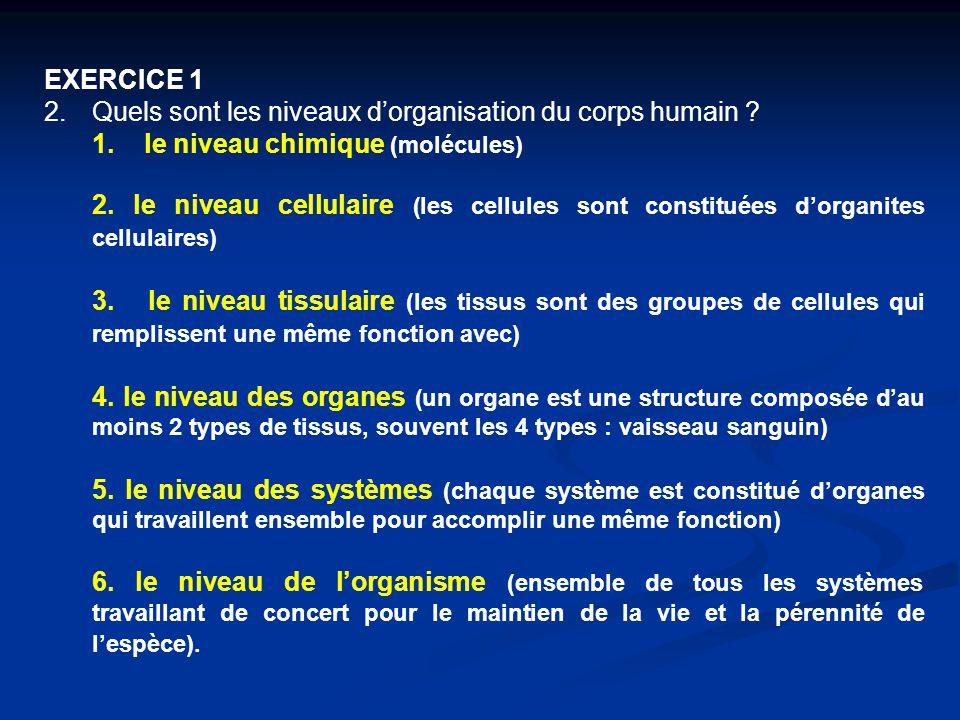EXERCICE 1 Quels sont les niveaux d'organisation du corps humain 1. le niveau chimique (molécules)