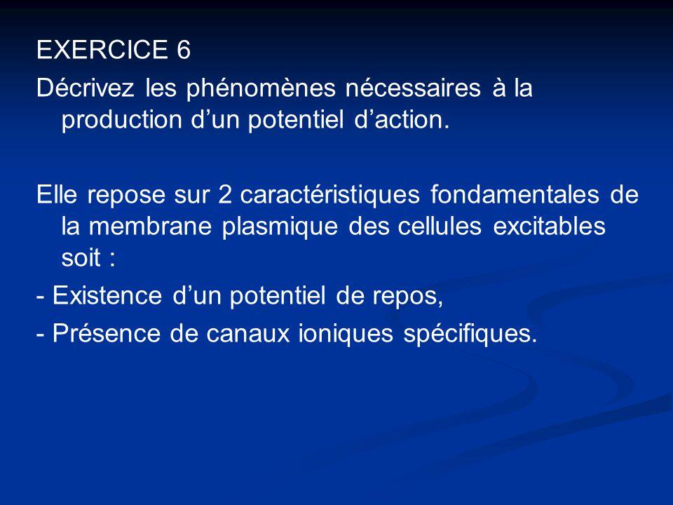 EXERCICE 6 Décrivez les phénomènes nécessaires à la production d'un potentiel d'action.