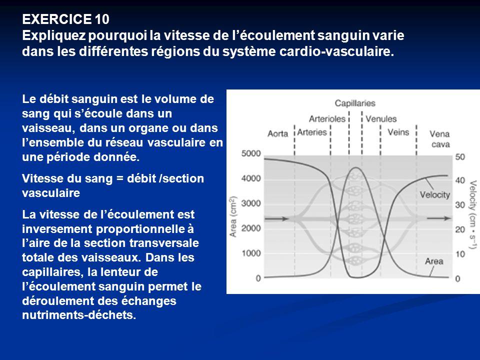 EXERCICE 10 Expliquez pourquoi la vitesse de l'écoulement sanguin varie dans les différentes régions du système cardio-vasculaire.