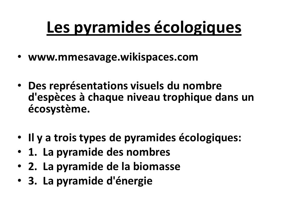 Les pyramides écologiques