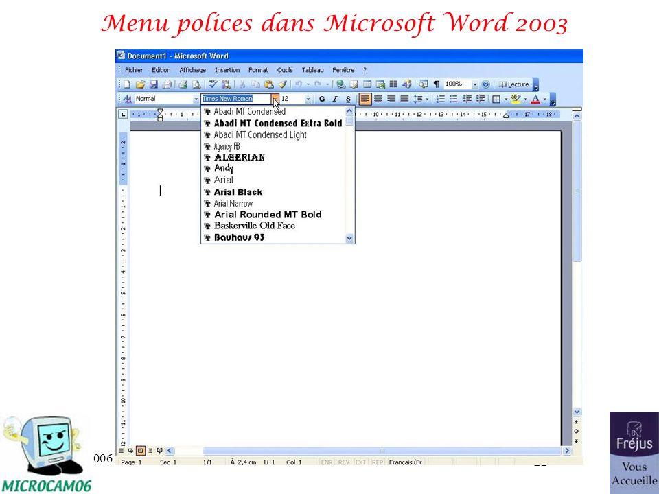 Menu polices dans Microsoft Word 2003