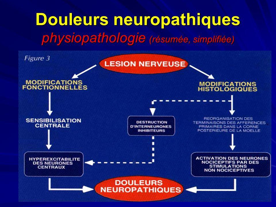 Douleurs neuropathiques physiopathologie (résumée, simplifiée)