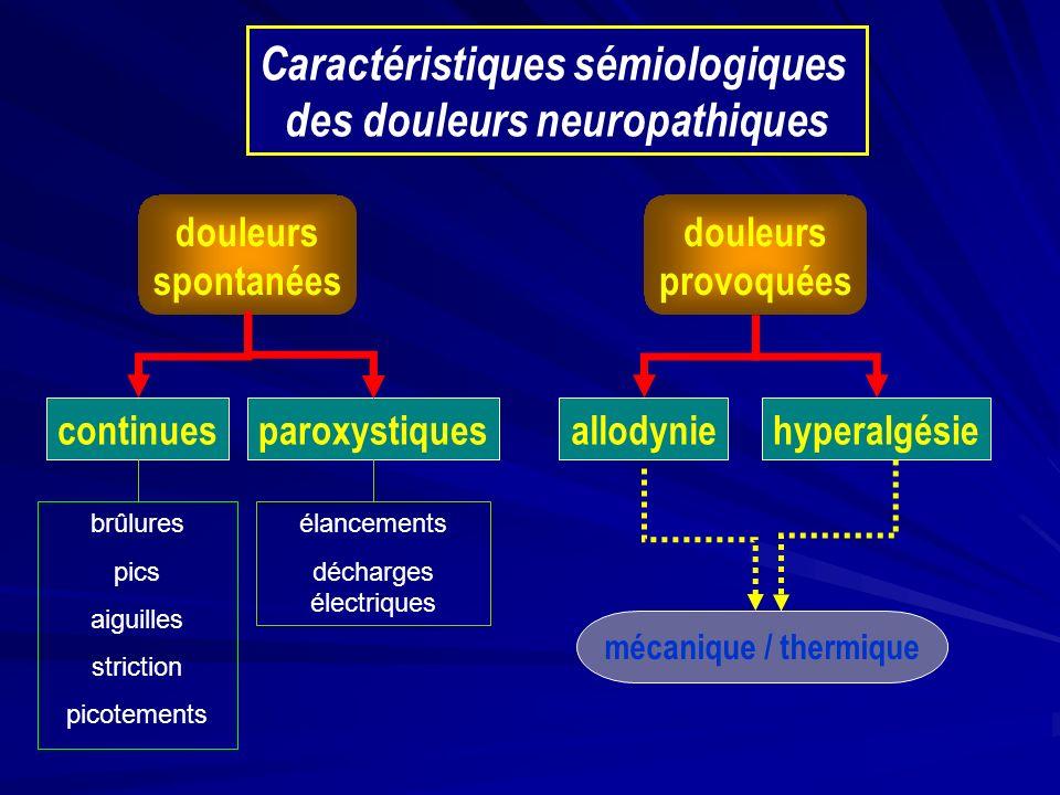 Caractéristiques sémiologiques des douleurs neuropathiques