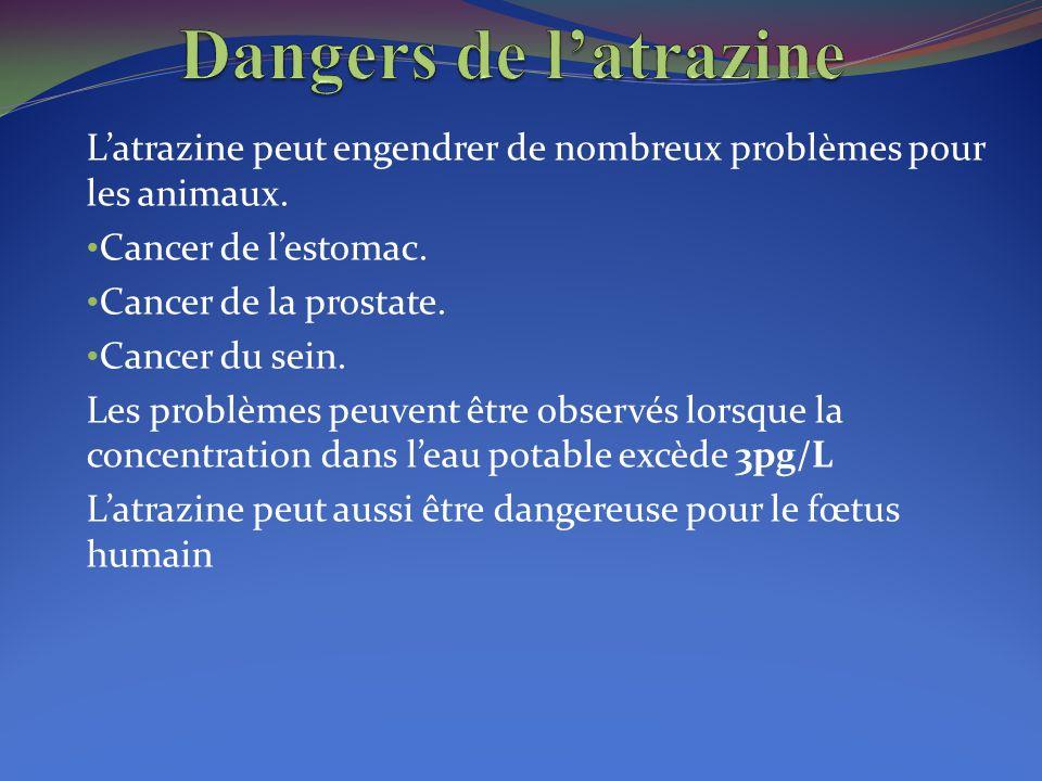 Dangers de l'atrazine L'atrazine peut engendrer de nombreux problèmes pour les animaux. Cancer de l'estomac.