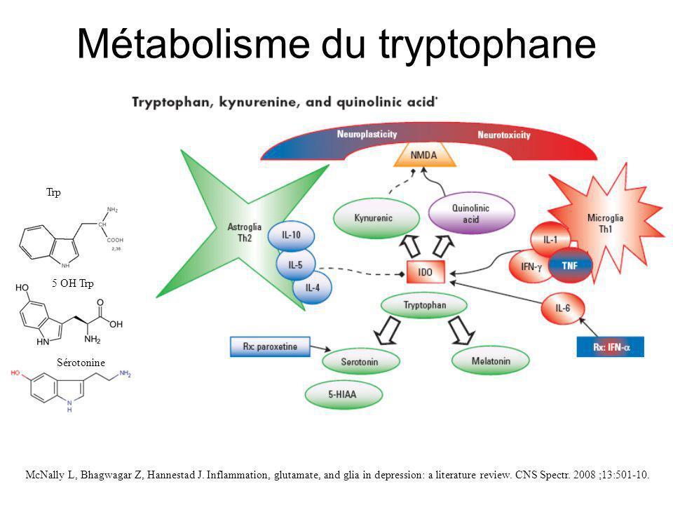 Métabolisme du tryptophane