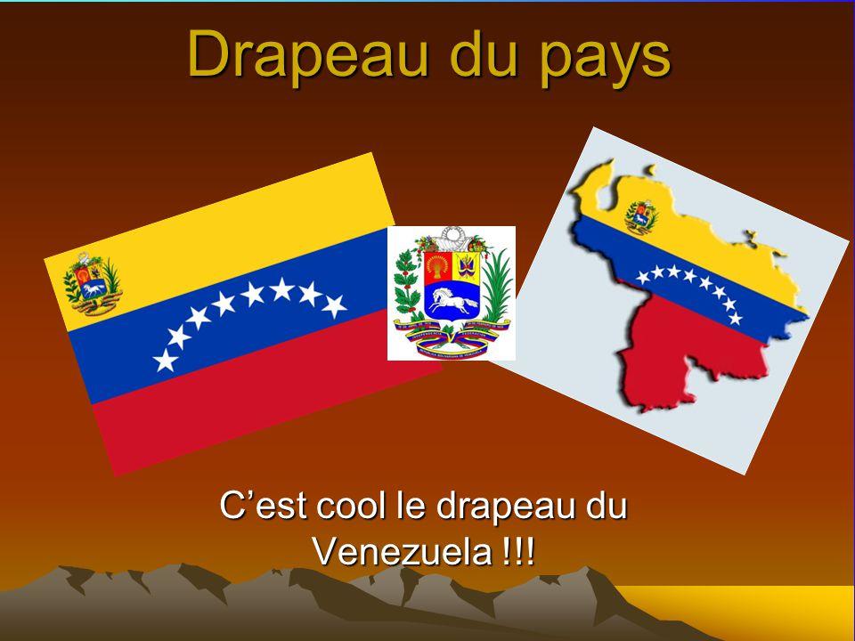 C'est cool le drapeau du Venezuela !!!