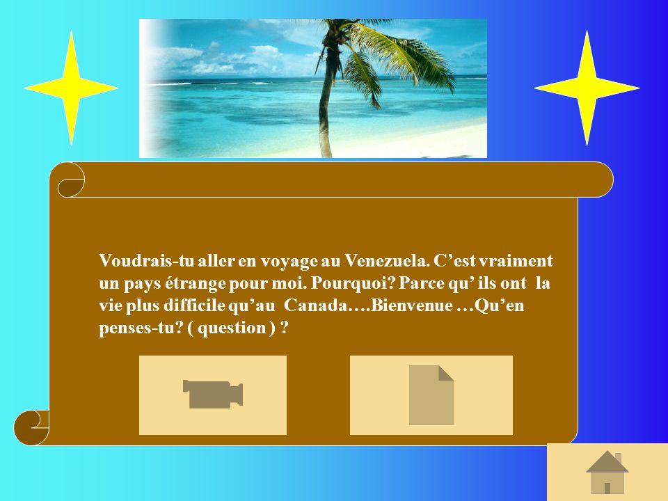Voudrais-tu aller en voyage au Venezuela