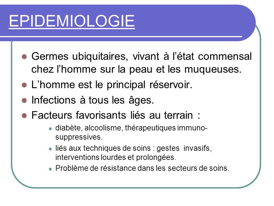 EPIDEMIOLOGIE Germes ubiquitaires, vivant à l'état commensal chez l'homme sur la peau et les muqueuses.