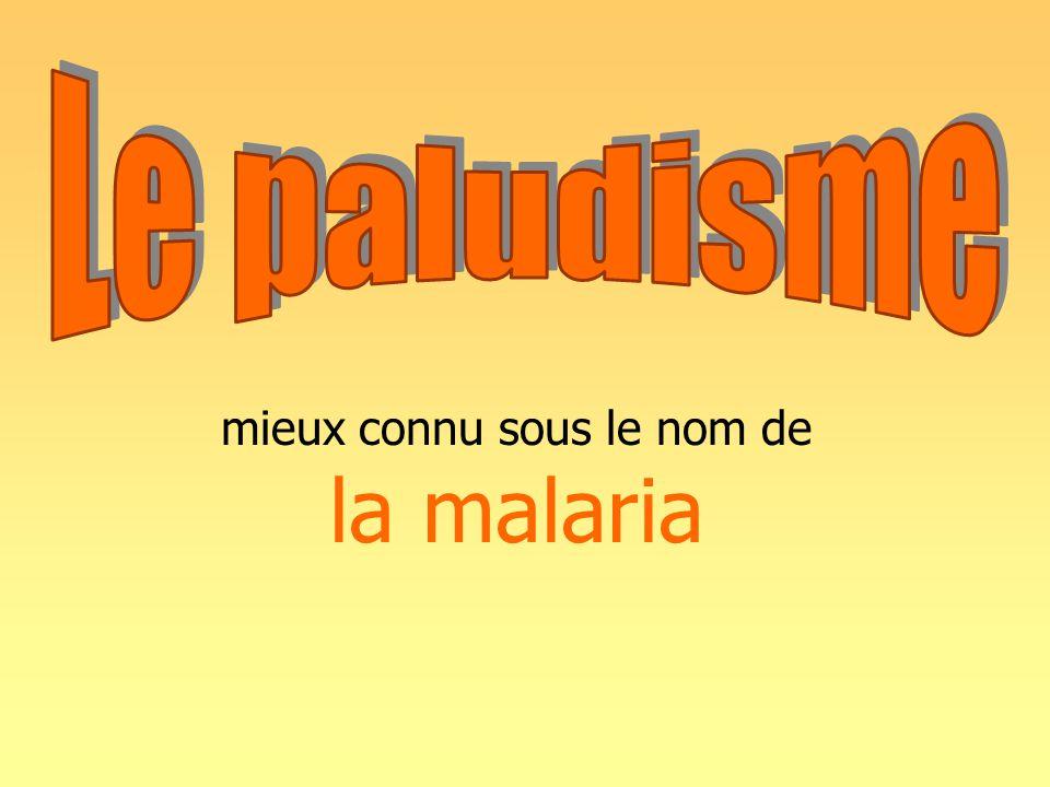 mieux connu sous le nom de la malaria