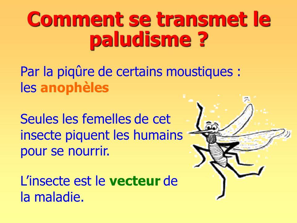 Comment se transmet le paludisme