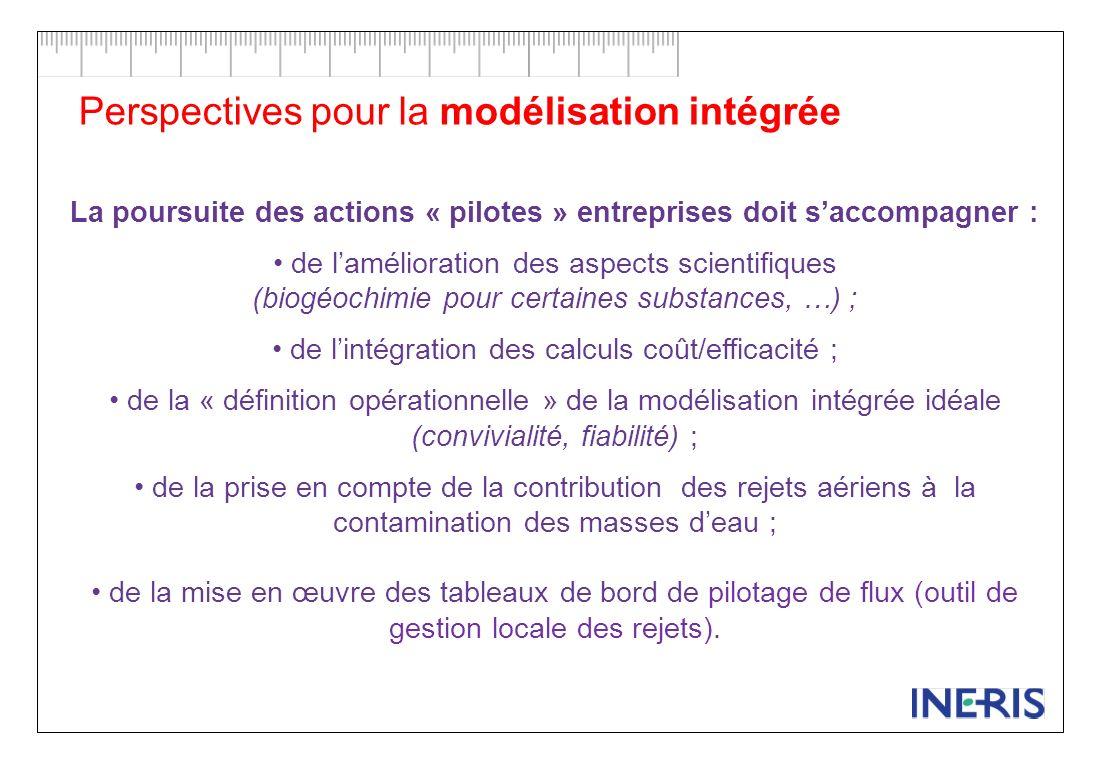 Perspectives pour la modélisation intégrée