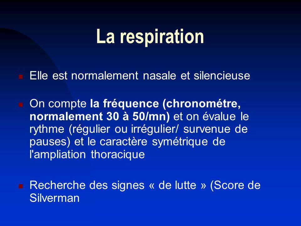 La respiration Elle est normalement nasale et silencieuse