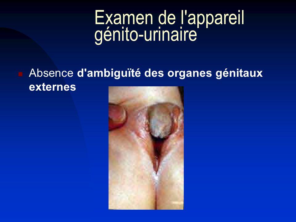 Examen de l appareil génito-urinaire