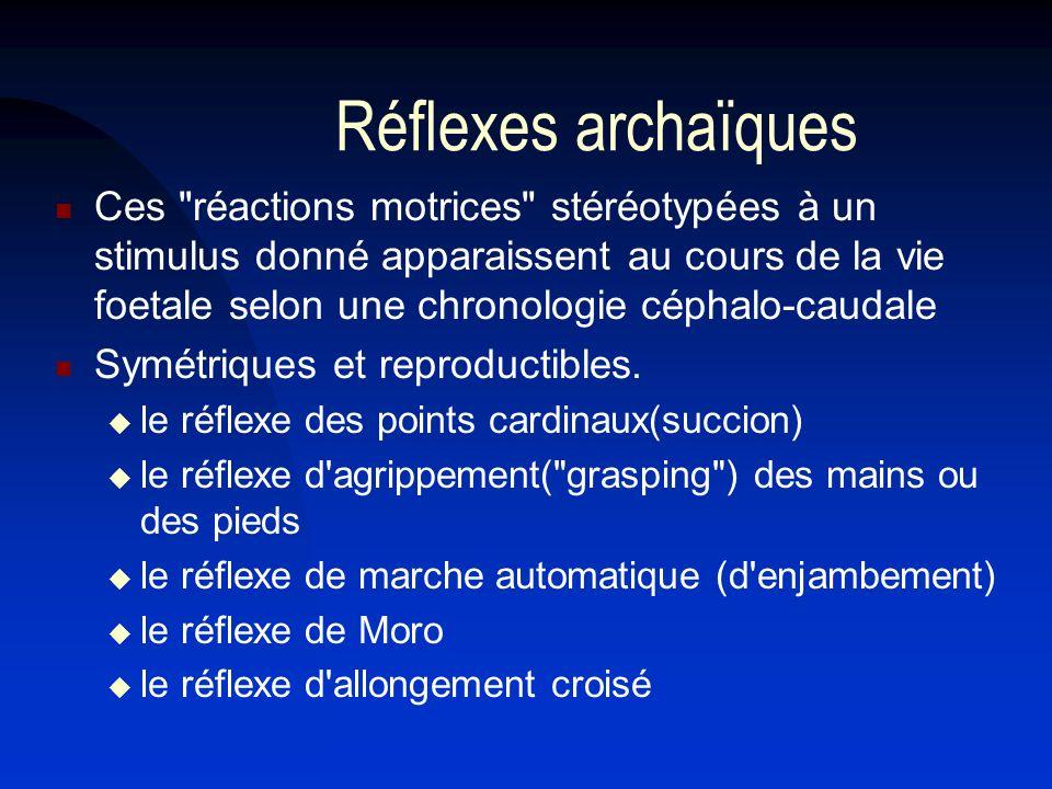 Réflexes archaïques