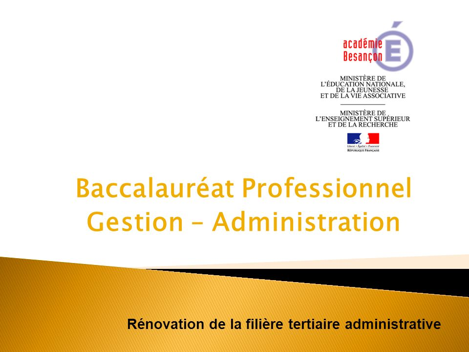 Baccalauréat Professionnel Gestion – Administration