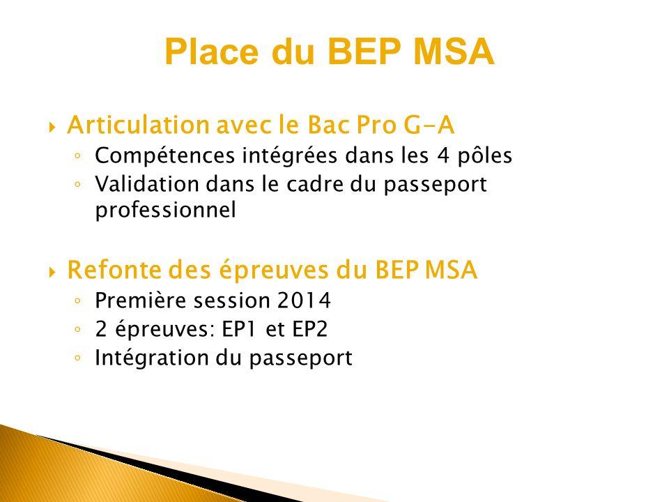 Place du BEP MSA Articulation avec le Bac Pro G-A