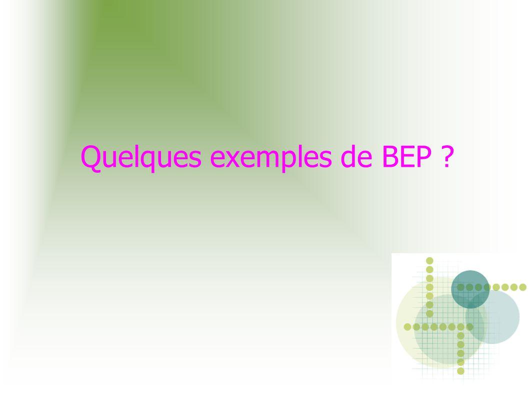 Quelques exemples de BEP