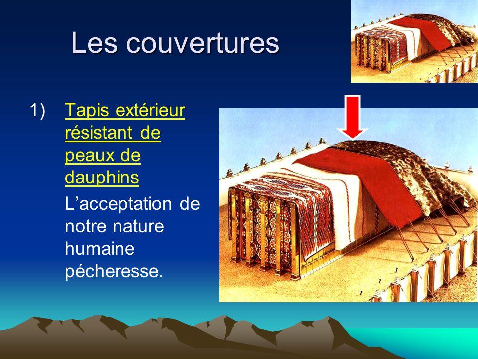 Les couvertures 1) Tapis extérieur résistant de peaux de dauphins