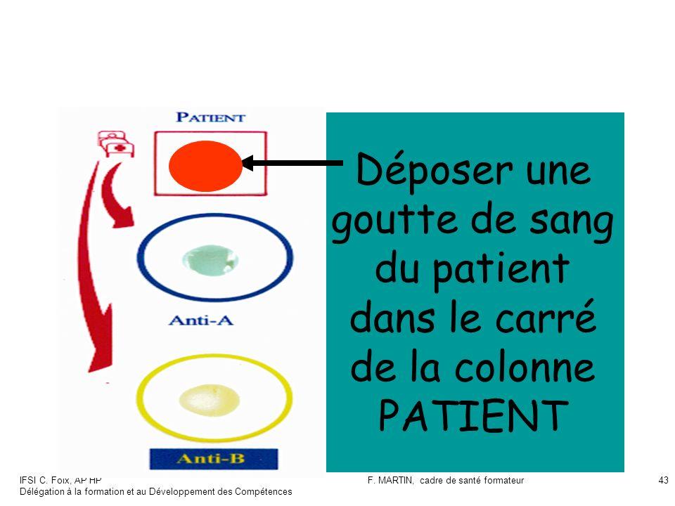 F. MARTIN, cadre de santé formateur