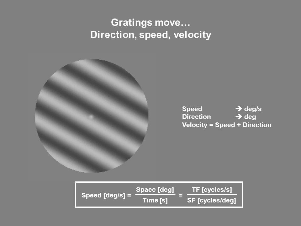 Direction, speed, velocity