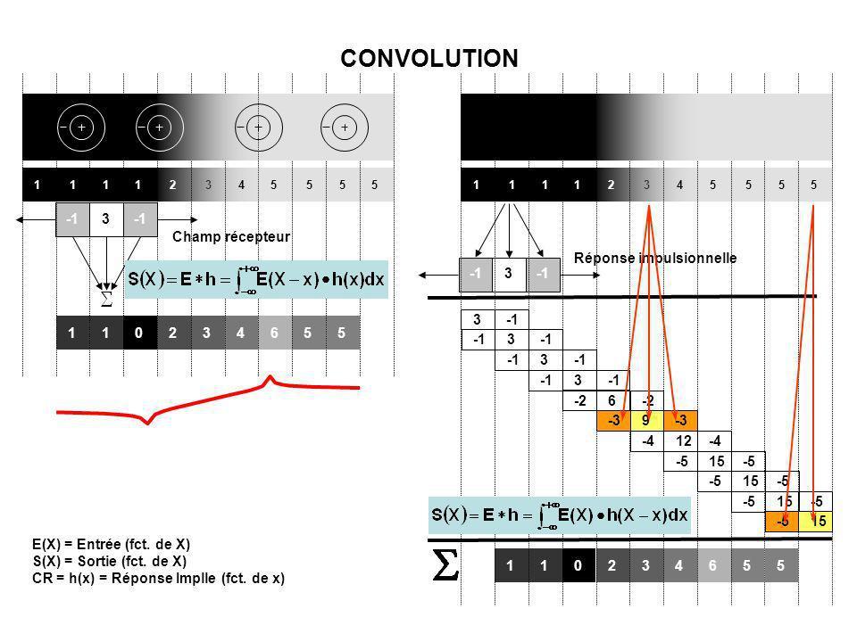 CONVOLUTION Champ récepteur -1 3 Réponse impulsionnelle -1 3 -1 3 1 2